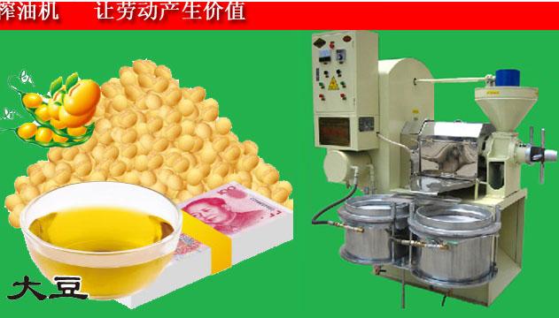 大豆榨油机